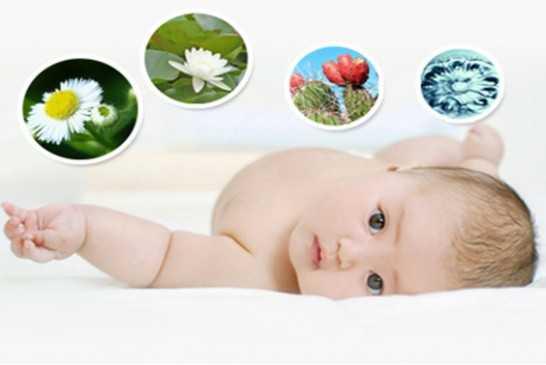 美国试管婴儿成功率