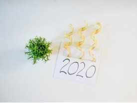 2020年只需12.8w人民币,即可启动你的冻卵计划