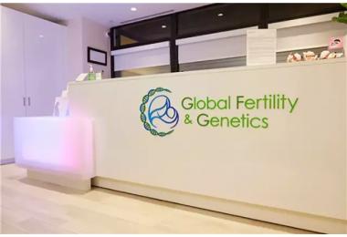 合作机构|设备先进团队一流——Global Fertility and Genetic
