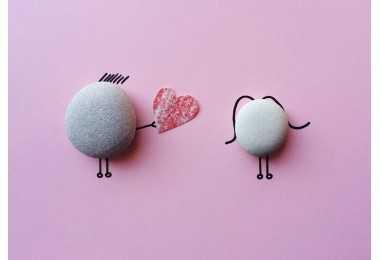 谣言粉碎机|鲜胚、冻胚的移植成功率都是一样的吗?